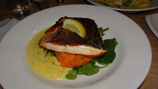 Jamestown, Australia: Salmon