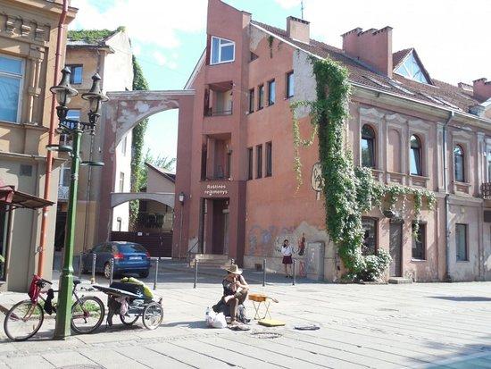 Старый город Каунас: Дома старого города