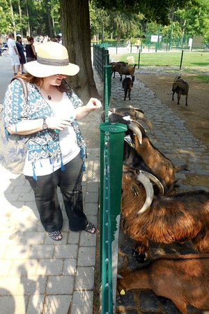 Lindenthaler Tierpark照片