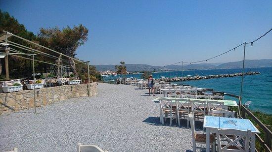 Ireon, Grecja: DSC_0449_large.jpg