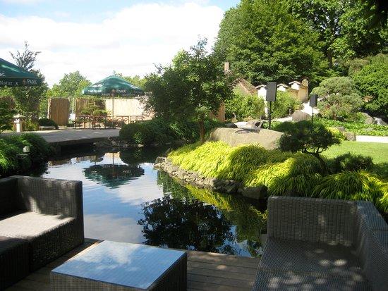 Kleiner Teich - Picture of Japanischer Garten (Japanese Garden ...