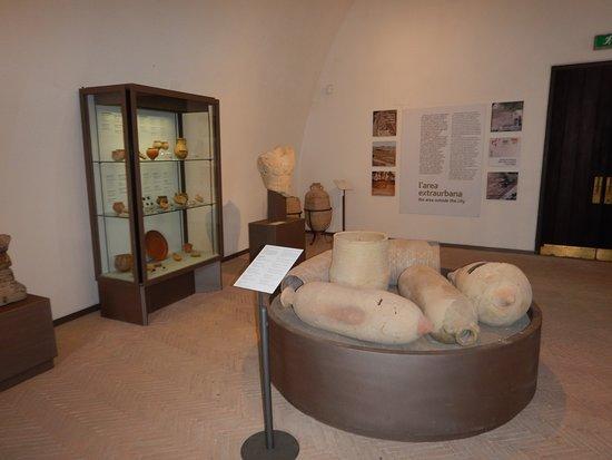 Museo Archeologico dei Campi Flegrei: Fund