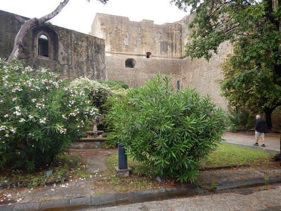 Museo Archeologico dei Campi Flegrei: Det grønne har næsten overtaget området med springvand