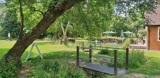 Eversley, UK: 20180622_123633_large.jpg