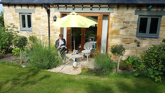 Stretton on Fosse, UK: Patio behind cottage, gorgeous spot: Cotswold stone cottage. Alice's Loft. Cosy cottage
