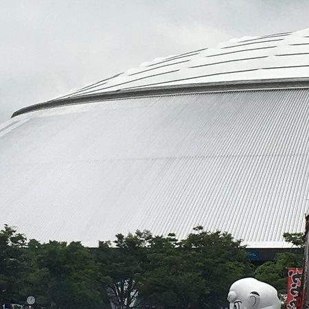Фотография MetLife Dome