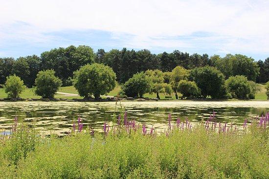 Jardin asiatique photo de parc georges valbon la courneuve tripadvisor - Jardin asiatique ...