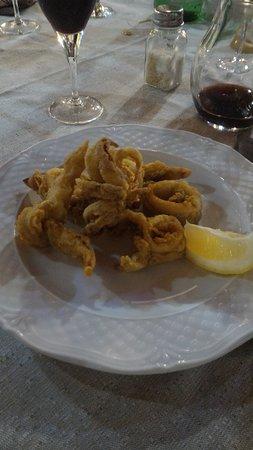 Ristorante Pizzeria Bar Valle Dei Nuraghi da Fabio: Secondo: calamari fritti