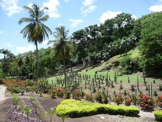 Zoo de Martinique - Habitation Latouche Admission Ticket: Jardin du Carbet