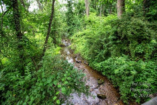 Stream - Kalmbach Park, Macungie, PA