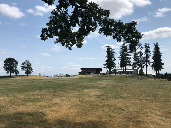 Stoller Family Estate: Immense lawn