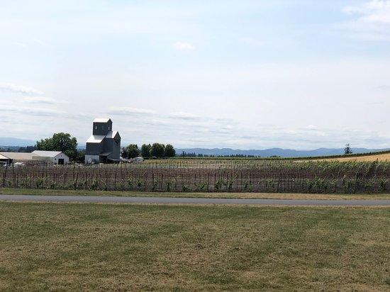 Stoller Family Estate: Stoller Vineyards