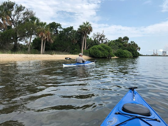 Aardvark's Florida Kayak Company: St. Martin's Marsh