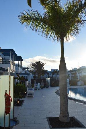 thb tropical island lanzaroteplaya blanca hotel reviews  price comparison