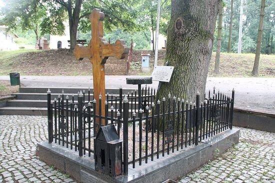 Velika Plana, Serbien: The old oak where Karađorđe was buried