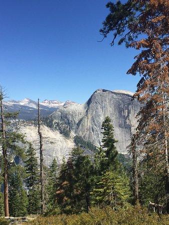 Yexplore Yosemite Adventures Day Tours Yosemite