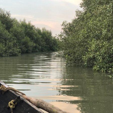 Bilde fra Tour de Sundarbans - Day Tours