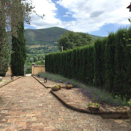 Bilde fra La Belle Evoque