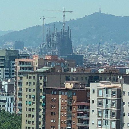 Фотография Barcelona Princess