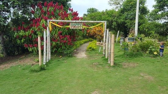Happy Fruit Agroecological Farm: Inicio del sendero por donde se hace el tour guiado a la finca