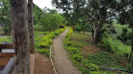 Happy Fruit Agroecological Farm: Parte del sendero del tour guiado