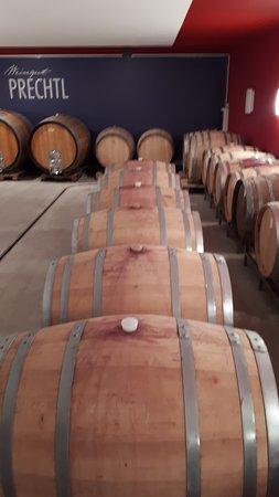 Zellerndorf, Austria: Köstlicher Wein in Fässern