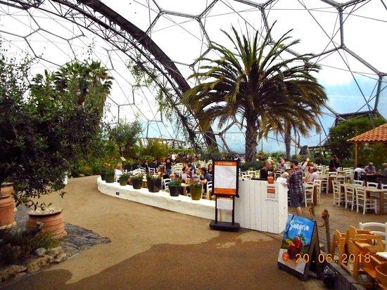Eden Project Photo