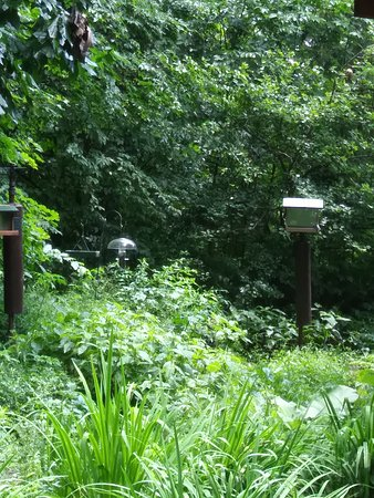 Highbanks Metro Park: Well Stocked Bird Feeders