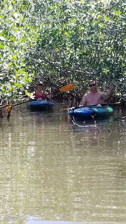 Siesta Key Bike and Kayak: Our friends Randy and Rachael in the mangroves