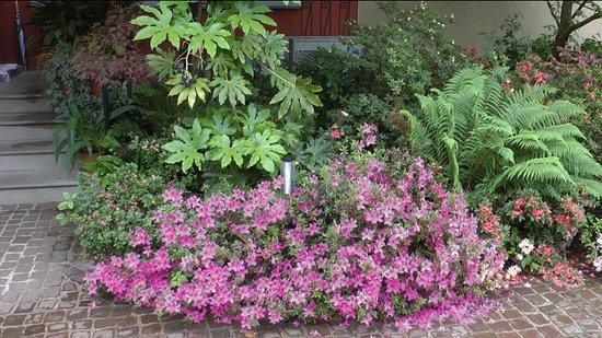 B&B Casa Stucky: garden