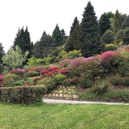 Carona, Switzerland: photo9.jpg