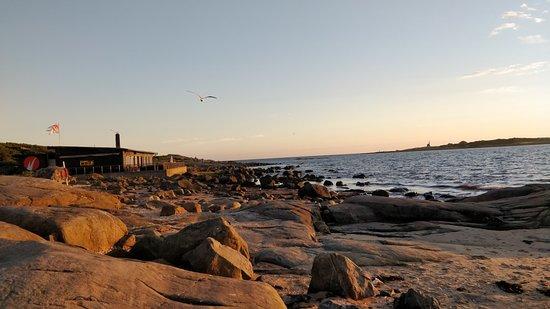 Valokuva: Tylösand Strand
