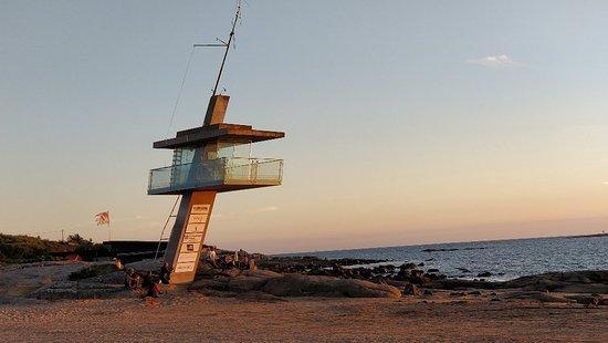 Bilde fra Tylösand Strand