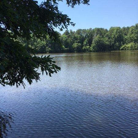 Bilde fra Historic Yates Mill County Park
