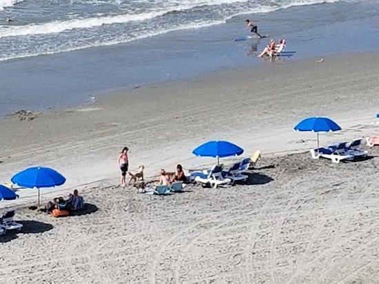 Foto Tides Folly Beach