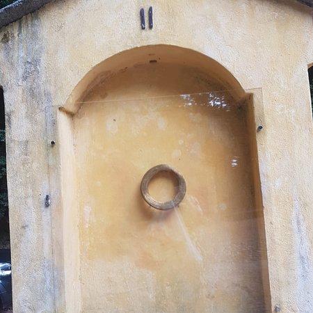 Bilde fra Santuario della Madonna d'Ongero