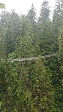 Подвесной мост и парк Капилано: suspension bridge-I dare you to jump up and down while on the bridge