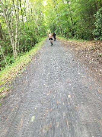 Creeper Trail Bike Rental: 20180624_111629_large.jpg