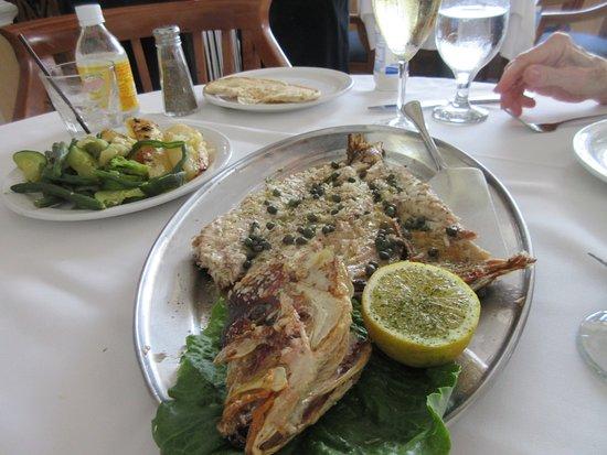 Mylos Greek Restaurant: Delicious yellow tail, very fresh