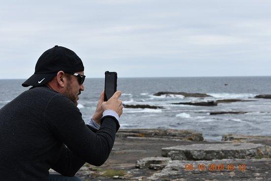 Kilkee Cliff Walk: Awesome sights