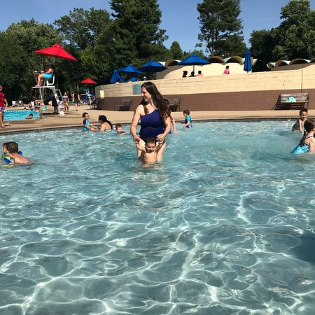 photo0.jpg - Picture of The Dolphin Swim Club, Feasterville ...