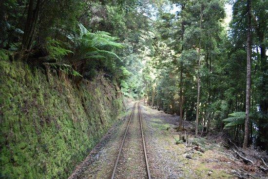 西海岸荒原铁路照片