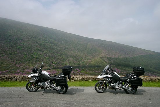 Celtic Rider 14-day WAW tour: Riding through Rhododhendron covered hills