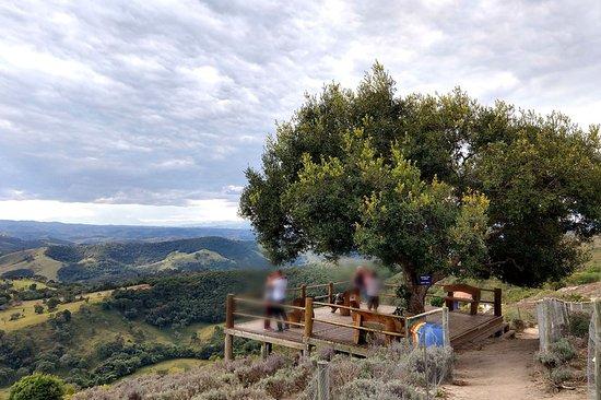 Lavandario: para contemplar a paisagem