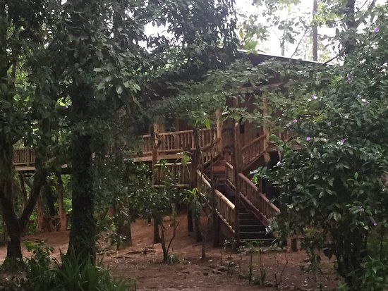 La Carolina Lodge: FAMILY CABIN