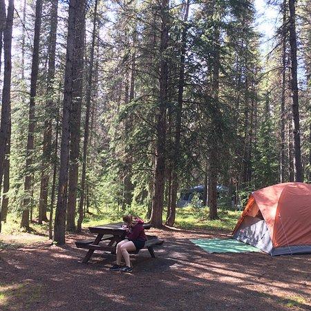 Waterfowl Lake Campground: photo0.jpg