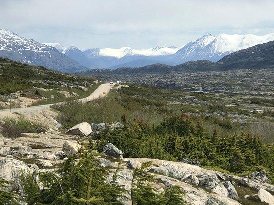 Skagway Shore Excursion: Half-Day Tour to the Yukon Border and Suspension Bridge: On the road to the Yukon Territory