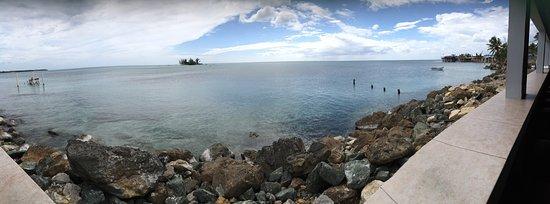 Island View: photo5.jpg