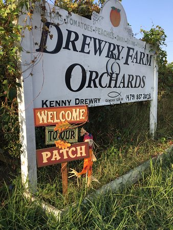Dover, Арканзас: Drewry Farm & orchards