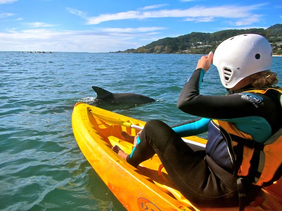 Byron Bay Adventure - Day Tours: Earth To Surf Adventure Tour with Byron Bay Adventure Tours